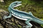 Ancient lizard named for Obama