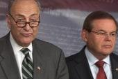 GOP 'surrenders' on immigration reform