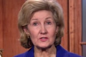 Hutchison: Comprehensive immigration...