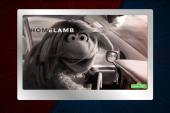 Sesame Street's spin-off of 'Homeland'