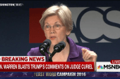 Sen. Warren: I'm ready to be Cmdr-in-Chief