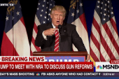 Trump's plan to stop mass shootings