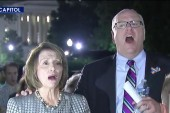 Pelosi praises protest, laments sick Congress