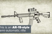 Once banned, a look at the popular AR-15