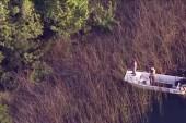 Report: Father said two gators in attack