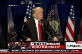 Trump and the return of poll denialism
