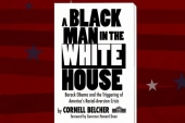 Cornell Belcher on Obama and America's ...