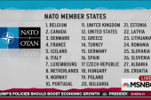 Trump botches number of NATO allies
