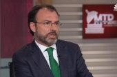 Mexican FM: U.S. Should 'Collaborate' on...