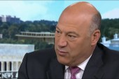 Gary Cohn: 'We can't solve every issue in...