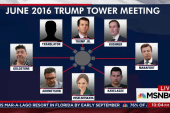 Eighth attendee of Trump Jr's meeting with...