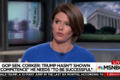 Hunt: Will Republicans call Trump out by...