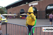 Fans are going bananas for baseball