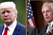 The dangers of attacking Bob Corker