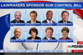 Senators unveil new bipartisan gun control...
