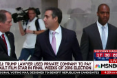 Trump attorney used private company to pay porn star: WSJ