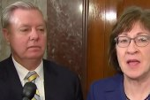 Key GOP Senators speak on gov't shutdown