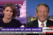 """Rep. Sanford: President's  immigration comments """"stupid"""", but other problems to tackle"""