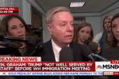Sen. Graham to 'Dreamers': 'We're not going to leave you behind'
