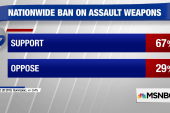 Poll: 67% support assault weapons ban