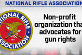 National Rifle Association's influence on lawmakers