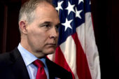 Bloomberg: White House cooling on support for Pruitt