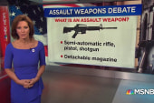 A closer look at the AR-15 and its capability