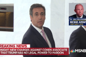 Michael Avenatti: Michael Cohen about to be 'in a world of hurt'