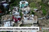 Study highlights dishonesty of official Puerto Rico death toll