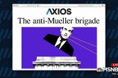 The anti-Mueller brigade