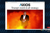 Trump's torch-it-all strategy