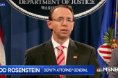 Paul Butler: Rosenstein said when Russians are attacking U.S. we're all Americans