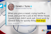 President Trump attacks Omarosa, calling her 'crazed' and a 'dog'
