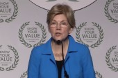 Panel: Warren releasing DNA test results proves she's 'not comfortable with Democratic electorate'