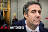 Michel Cohen's new lease on political life