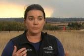 California wildfire survivors share their escape stories