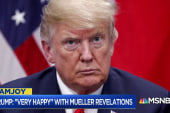 Nick Ackerman: Mueller filing puts Trump in middle of a conspiracy
