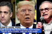 Michael Cohen: 'Of course' Trump knew hush money payments were wrong