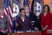 House leaders unveil Democracy Task Force