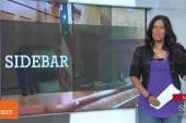 The Docket: Sandra Bland investigation