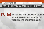 Pregnant intruder gunned down by homeowner