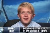 9-year-old inspires shark fin bill
