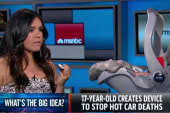 Big Idea: A device to stop hot car deaths
