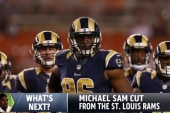 'The journey continues' for Michael Sam