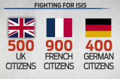 The international response to ISIS