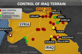 What action is needed to combat ISIS?