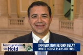 Immigration reform delayed