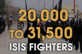 CIA ups estimate of ISIS fighters
