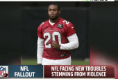 NFL sees new domestic violence charges