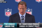 Did Roger Goodell miss the mark?